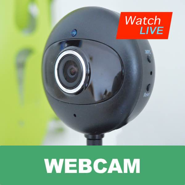 Image showing clipart webcam with watch live text